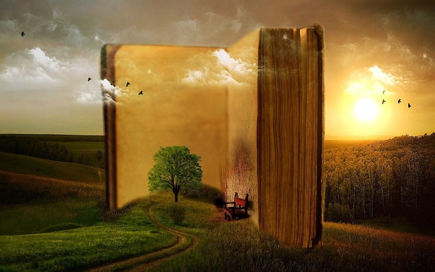 complete your novel with goals - literative