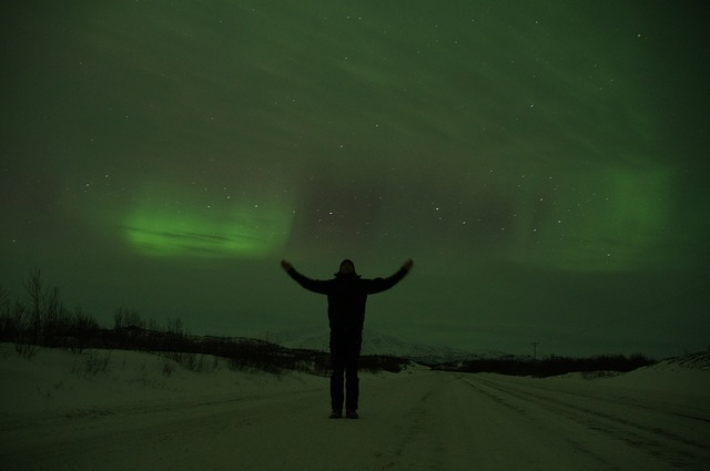 An image of a man standing, looking at the Northern Lights