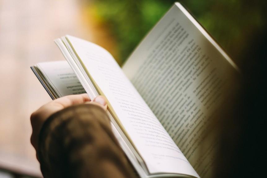 novel - literative