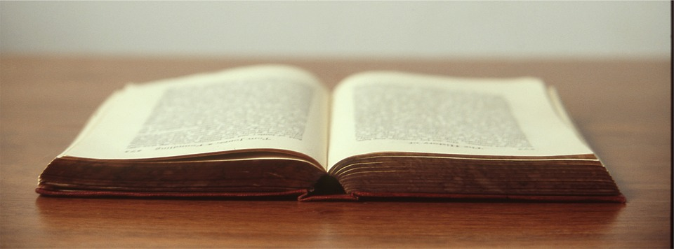 novel pages - literative