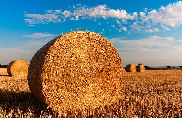 A photo of bales of hay